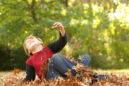 frolicking: Falling over in the fall..... A child falls backwards in autumn foliage.
