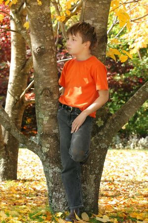 A child stands amongst the varying and colourful deciduous trees and leaves in the Autumn season photo