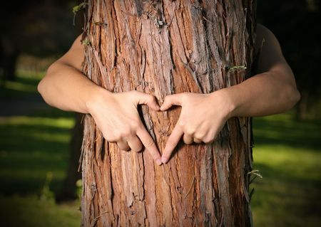 tree felling: Tree Lover.  A person who loves nature, saves nature or empowers people to grow and care for urban and community trees and forests. Stock Photo