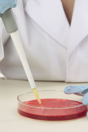 A scientist at work in a laboratory. photo