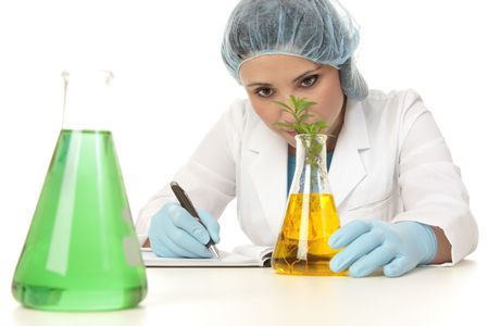 agricultural engineering: Scientist, botanist, studying a plant in laboratory.