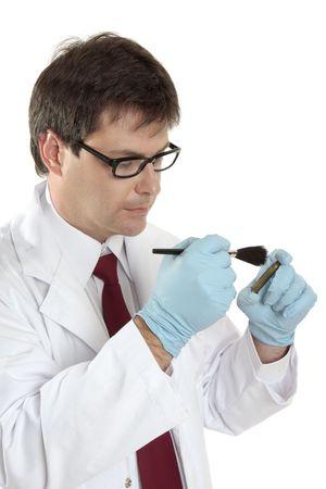 crime solving: A forensic investigator dusts a shell casing for fingerprints