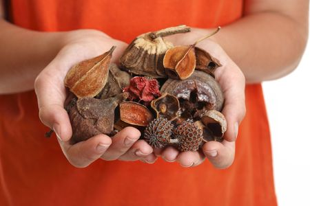 potpourri: Potpourri is a  scented mixture of dried, naturally fragrant plant materials such as seeds, dried flowers, bark, nuts, leaves and cones.