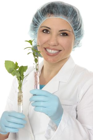 epidemiology: Scientist holds plants growing in test tubes