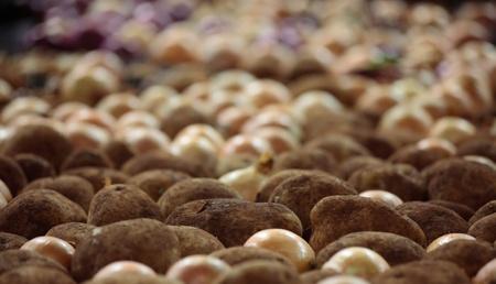 onions: Una caja grande de patatas lavadas y cebollas. Foicus a las patatas