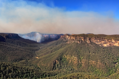 bushfire: Bushfire in the Grose Valley, B lue Mountains, Australia has threatened towns on the escarpment.  The fireedge is around 66kms with access into valley via trails.  The Valley is over 600-1000m deep..  View from Blackheath