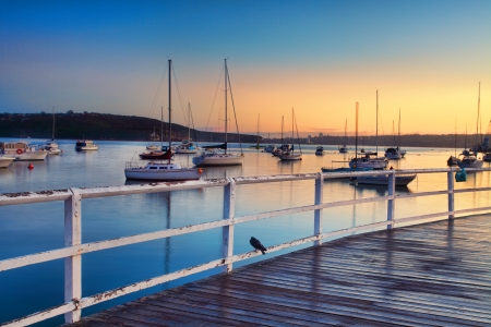 moorings: Boats, yachts and catamarans bob and tug at their moorings at sunrise, dreaming of places yet unvisited.