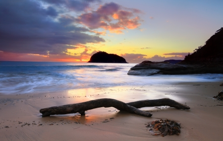 driftwood: Sunrise behind  Lion Island, Australia   Lion Island is a nature reserve and part of Austalian National Heritage List