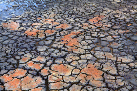 replenish: Environment and Drought.  Rain falls on cracked dry clay earth