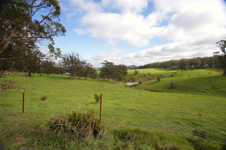 Picturesque vista of olling hills and cattle grazing in the Southern Highlands Australia photo