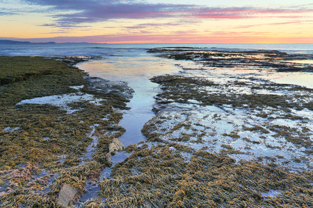 overflows: Overflows of waves on the reef flow back and drain back to the sea.  Long Reef Australia at sunrise Stock Photo