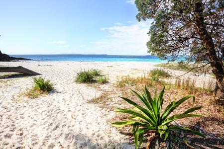 unspoilt: Beautiful unspoilt white sandy beach, Greenfields Beach, Jervis Bay, Australia Stock Photo