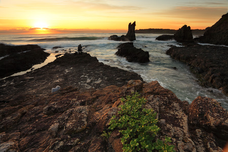 kiama: Cathedral Rock, Kiama Australia at sunrise.   These vocanic rocks have lured many tourists and photographers due to their distinctive shapes. Stock Photo