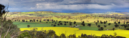 Looking down over fields of canola, wheat  and grazing pastures with menacing storm clouds looming overhead and offering large downpours of heavy rain intermittently.  NSW,Australia  Shot at 1250 iso. photo