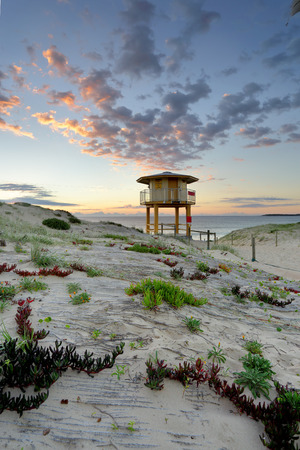 ice plant: View across the sand dunes to the Wanda Beach surf life guard tower at sunrise.  Plants including Ice plant - Carpobrotus edulis in the foreground. Stock Photo