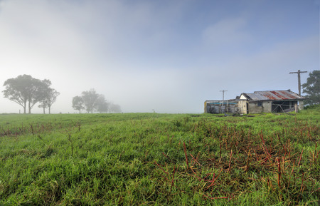 south coast: Misty foggy morning at Brundee with an old dairy farm shed on the south coast of NSW. Stock Photo