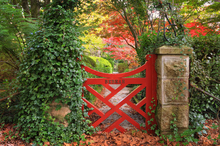 open gate: The little red gate at Bebeah Gardens in Autumn.  The parklands were originally built by Edward Cox in 1880.  Sprawling over 5 acres the garden includes various vistas of formal country garden with a grand sense of design. Bebeah is an open garden best vi