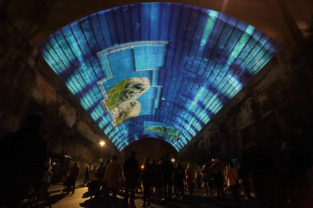narration: SYDNEY, AUSTRALIA - JUNE 3, 2015 -  Public and tourists watch in awe the amazing projection pictures of Life Story  in the Argyle Cut (tunnel)  from Argyle Street the Rocks-  with sound and editorial narration by Sir David Attenborough for Vivid Sydney. H