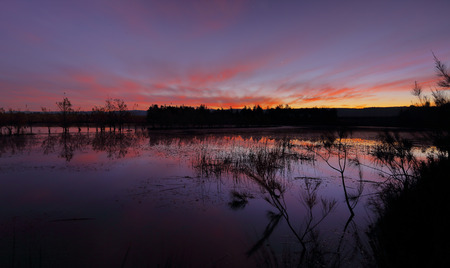 wetland: Dusk colours of purple blues and vibrant reds over Duralia Lakes in Penrith with silhouettes of trees, reeds and wetland grasses.