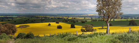 on the hill: Miles and miles of countryside views....  Rural panorama of farmlands across  Bumbaldry and Greenthorpe in Central West NSW Stock Photo