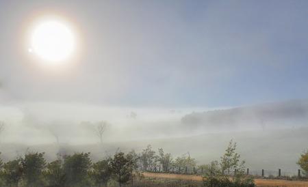 estado del tiempo: Invierno sol brilla a trav�s de la espesa niebla en un paisaje rural helada en Carcoar. El paisaje fr�o envuelto en una densa niebla y la visibilidad oscurecimiento, pero crea una m�gica escena enfoque suave m�stico. Foto de archivo