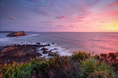 kiama: Pretty clouds light up at sunrise with views from the Minamurra headland overlooking the exposed volcanic rocks below and Stack Island.  Water and some foreground leaves in motion Stock Photo