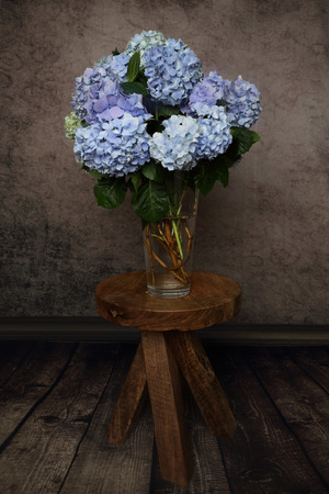 blooming  purple: Hydrangea flowers from the garden cut and arranged in a glass vase and sitting on a rustic timber stool table.   Home decor, springtime, floral arrangement Editorial