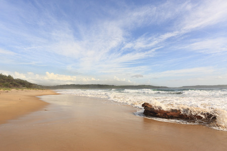 rips: Waves crash over a large log on  Minnamurra Beach.  Lots of sea spray blowing in continuously, this beach can be rough and hazardous with constant rips.