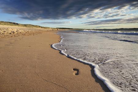 footsteps: Footsteps in the sand.