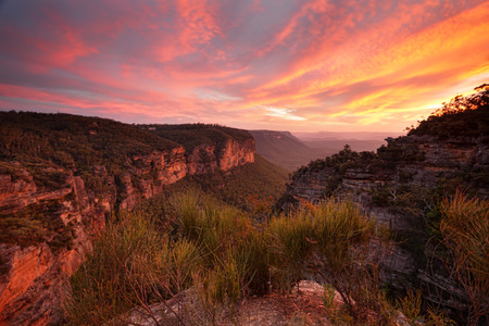 bushwalk: Magnificent views and spectacular sunset from Norths Lookout in Katoomba, named after John Britty North, founder of coal mining in Katoomba. Reds of the sky are reflected back into the landscape.  The colours were intense and vibrant
