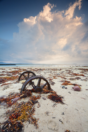 existed: Rusty wheels in the sand surrounded by colourful weed washed up in  a recent big swell. The wheels are left from a train line that existed to haul cut rock from Windang Island to the mainland to build the breakwaters.