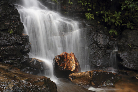 bushwalk: Edith Falls, Valley of the Waters Creek, Blue Mountains National Park, New South Wales (NSW), Australia Stock Photo
