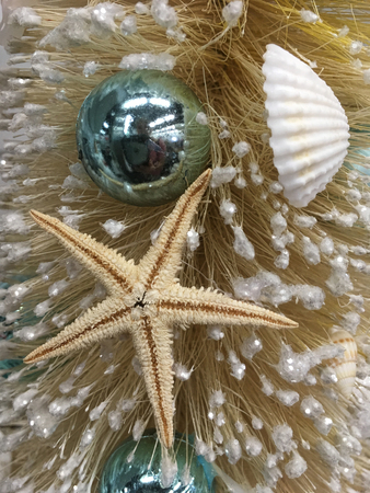 beach themed christmas decorated tree with baubles sea shells and sea stars stock photo