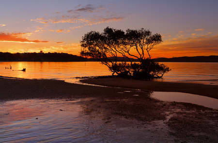 Beautiful sunset colours on the tidal flats of Salamander Bay 스톡 콘텐츠
