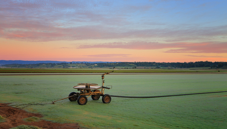 Rural farmlands - frosty turf farms at sunrise. Stock Photo
