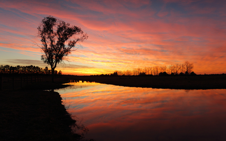 Spectacular sunrise with fiery skies and colourful hues reflected in the water and contrasted against tree silhouettes in rural NSW Australia Stock Photo
