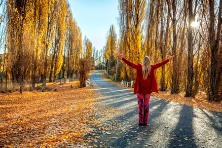 A woman with arms outstretched enjoying countryside in Autumn.  A road lined with golden Poplars and filtered sunshine. 版權商用圖片