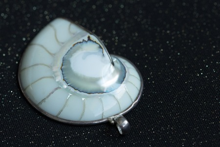 deepsea: A neck pendant made of white nautilus shell, is well-polished. Its surface reflects brightly in a mild sunlight.