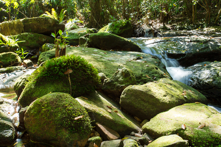 Phu Kradueng National Park, is the highland located in the north-east of Thailand. The National Park consists of fresh forest, and is the source of streams. The Penpob Waterfall, is one of the Phu Kradueng's attractions.