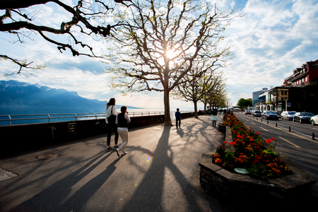 Trees on the walkway along a lakeside, are putting forth fresh leaves. This view is taken at the Lake Geneva, in a town called Vevey in Switzerland.