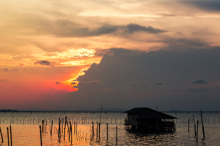 The lagoon of Songkhla, is located in the south of Thailand. Community around the lagoon are fishing villages, that breed sea bass in breeding nets supported by wooden poles. Fishermen reside on the lakeside or lake houses, and travel by long-tailed boats