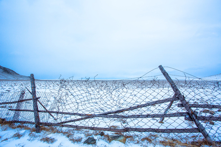 Livestock farmers in Siberia let their cattle freely roaming within the area of the farm at daytime. The farmers install the fence indicating the farm area, and tilt against the greatly expanded wind. Standard-Bild - 105838250