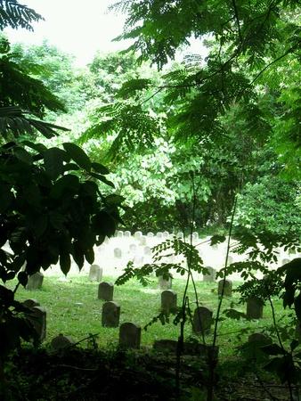 tombstones: Old Graveyard Cemetery Cemetery Graves Tombstones
