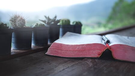 Close up opening red Bible in morning on wooden table. Christian concept. Reklamní fotografie