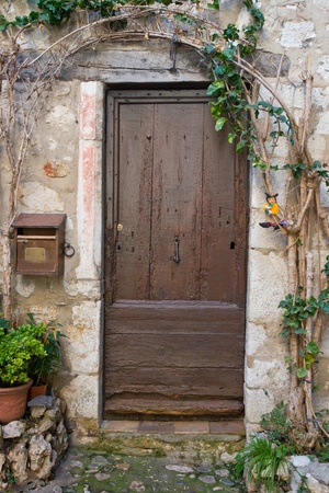 A photo of an old door with vines and a mailbox  photo