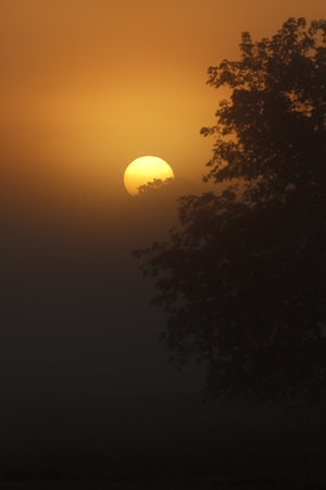 Photo of an early morning sunrise on a foggy day Stock fotó