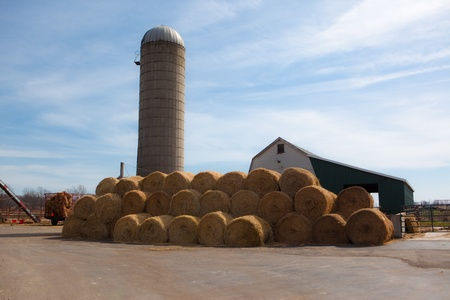 This is a wide angle photo of bales of hay stacked on a dairy farm  The background contains a silo, barn, and blue sky
