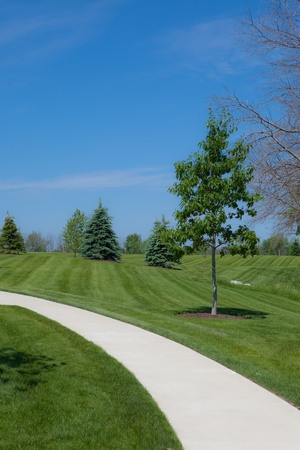 grassy knoll: This is a photo of a curving footpath leading through a grassy knoll. There is a blue sky background