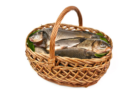 Fresh fish in a basket isolated in white Stock Photo - 27868232