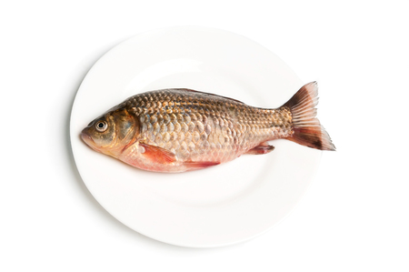 fish plate: Fresh fish on plate on white background Stock Photo